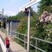 Riedstadt-Wolfskehlen Station