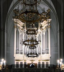 Rieger Organ