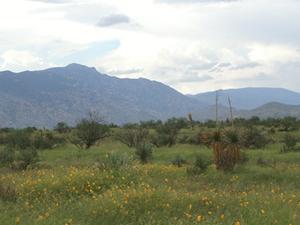 Rincón Montañas