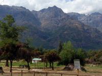 Rio de Los Cipreses National Reserve