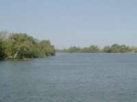 River Gambia National Park