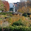 Riverfront Park View - Harrisburg PA