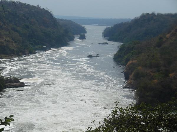 3 Days Murchison Falls Wild Safari Tour Photos