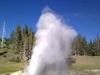 Riverside Geyser - Yellowstone - Wyoming - USA