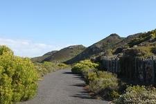 Road Inside Table Mountain National Park SA