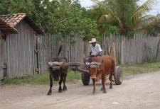 Road In Talanga - Honduras