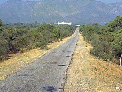 Road To Sariska Palace, Sariska