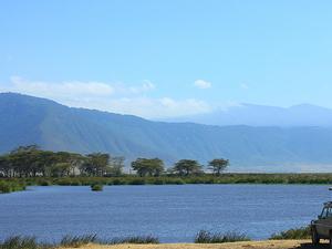 Road Trip to Tanzania