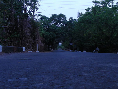 Road View