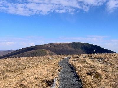 Roan Highland - Grassy Ridge