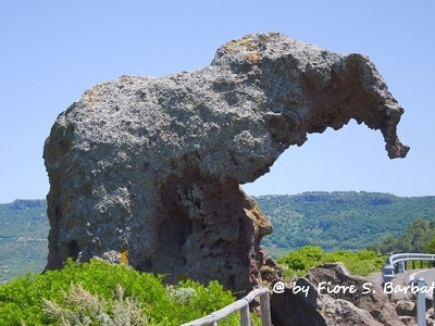 Roccia Dell'Elefante - Castelsardo IT