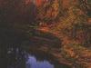 Rock Island State Trail