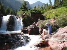 Rockwell Falls Trail - Glacier - Montana - U