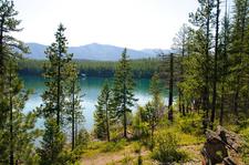 Rocky Point Trail At Glacier - Montana - USA
