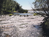 Roe River