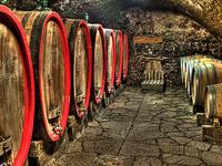 Romanian Vineyards and Cellars - 7 Days Tour