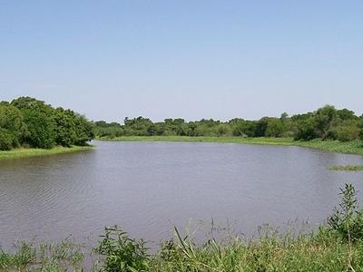 Río Negro Rivers