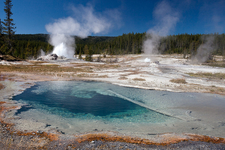 Rosette Geyser - Yellowstone - USA
