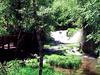 Roughlock Falls Nature Area