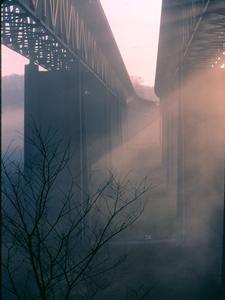 Route 82 Bridge In The Mist