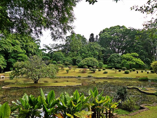 Wonderful Sri Lanka Tour Photos