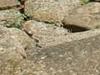 Ruinas Romanas De Andelos Mendigorría