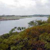 Rumney Marsh Reservation