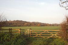 Runnymede Meadow Eghamend