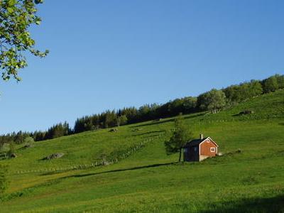 Kvæfjord Landscape