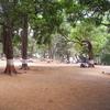Ryewood Park Visitor Benches - Lonavala - Maharashtra - India