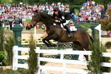 Rider And Horse In Show Jumping