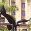 RAAF Memorial Eagle