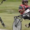 Harness Racing At Raceway Park