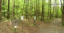 The Rainbow Falls Trail Trailhead