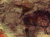 Replica At Museo Arqueolgico Nacional Of Cave Of Altamira