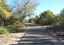 The Paseo Del Bosque Trail