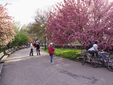 Riverside Park Has Many Walking And Bicycle Paths