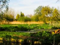 Río Wandle