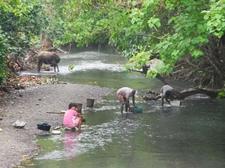 River At Caramoan