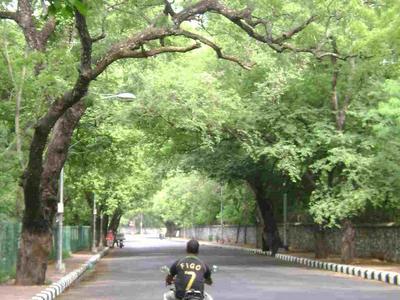 View Of Besant Nagar
