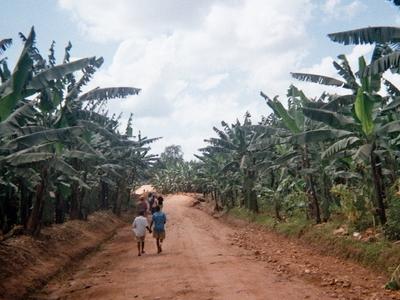Road To  Omachanda