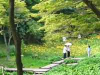 Rokko Alpine Botanical Garden