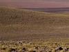 Romanceor  Altiplano