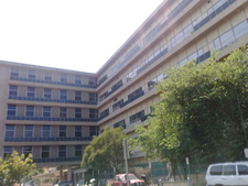 Royal Adelaide Hospital View