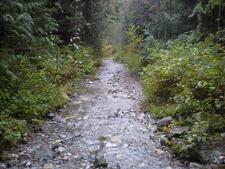 Saddle Mountain Trail 91 - Tonto National Forest - Arizona - USA