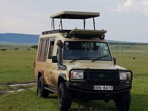 Kenya 11 Days Supreme Tour→ Safari Land Cruiser→008 Fotos