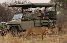 Safari Secrets