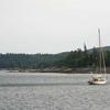 Sailboat In Frenchman's Bay ME