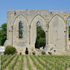 Small-Group St-Emilion Bike Tour from Bordeaux Including Wine Tastings and Lunch