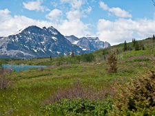 Saint Mary Lake Trailviews - Glacier - USA